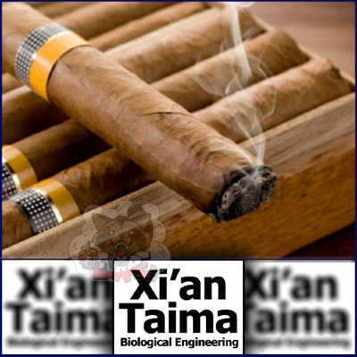 Xi'an - Cigar