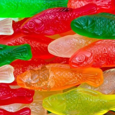 Capella - 27 Fish